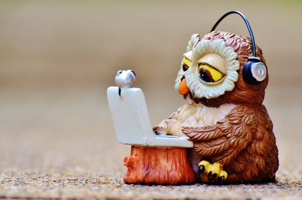 owl-947768_1280
